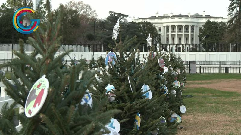 State Christmas Trees