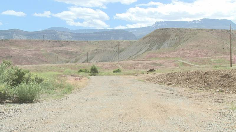 Conservation Colorado welcomes Beatriz Soto to lead Protégete.