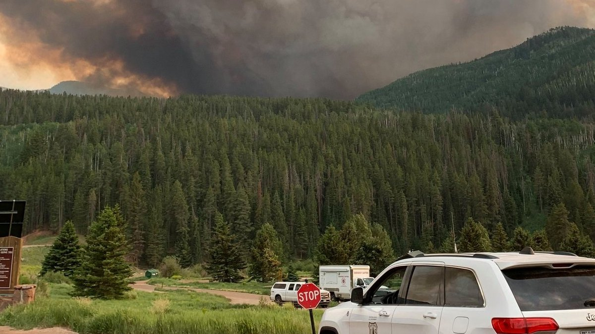 This photo was provided by the U.S. Forest Service.