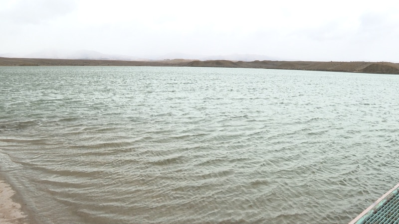 Small waves on lake created by windy conditions