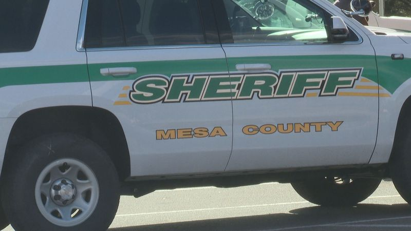 Deputies from the Mesa County Sheriff's Office responded to the scene of the incident