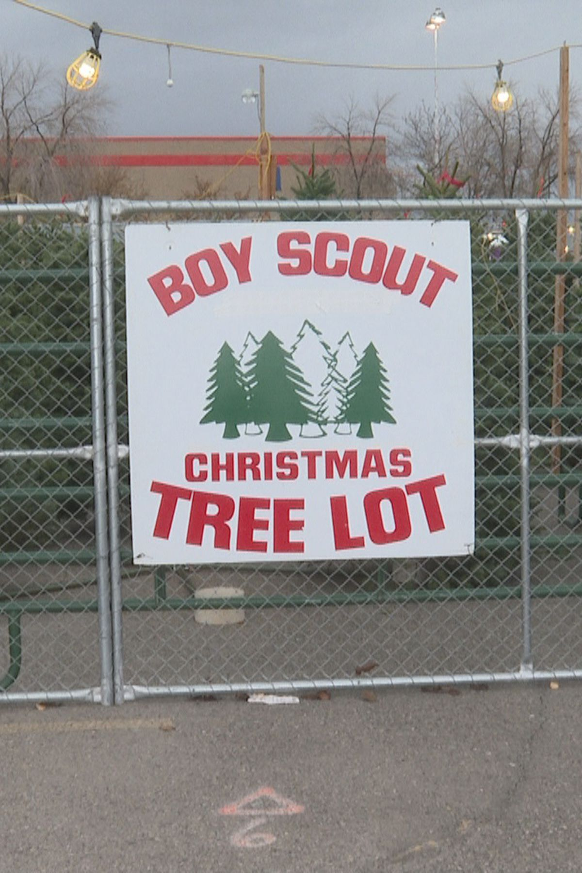Local Boy Scout troops fundraise with Christmas tree sale