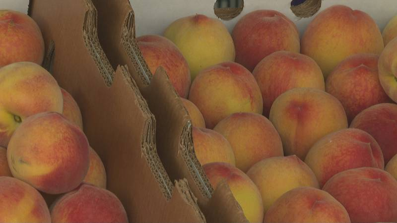 Clark Family Orchards peaches are for sale at the farm's stand in Palisade, Colo.